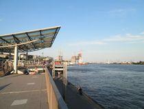 Bild: Zwischen Hafen, Michel und Rathaus