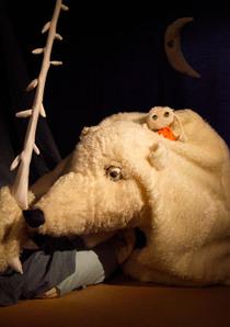 Bild: Der weiße und der schwarze Bär