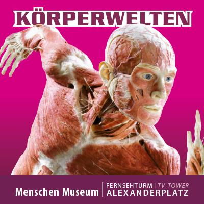 KÖRPERWELTEN im Menschen Museum Berlin - Facetten des Lebens