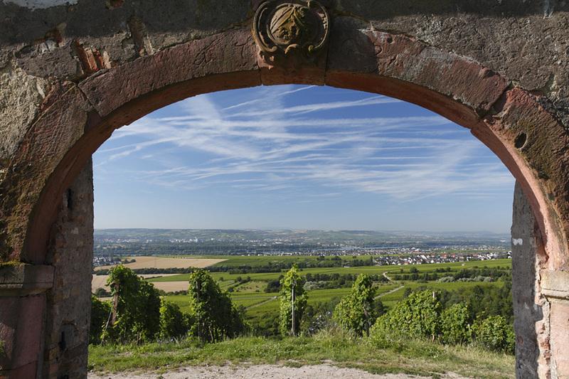 Hinter die Mauer geschaut! - 2 –stündige Weinbergswanderung durch den altehrwürdigen Steinberg