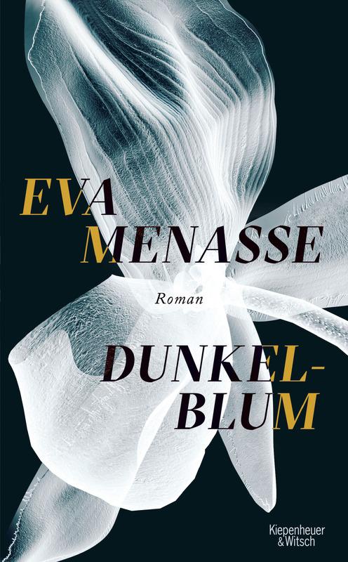 """Eva Menasse """"Dunkelblum"""""""