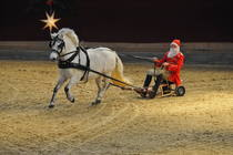 Bild: Neust�dter Weihnachtsgala - Neust�dter Weihnachtsgala - die m�rchenhafte Pferdeshow zum Fest!