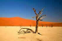 Bild: Namibia (Vortrag)