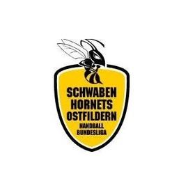 Bild: Vfl Oldenburg - TV Nellingen
