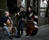 Bild: Project Trio - Greg Pattillo