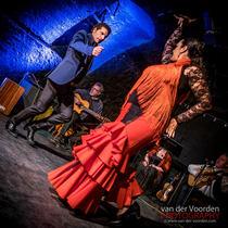 Bild: �Impressionen einer Andalusischen Reise� - mit Danza Fuego Flamenco-Tanztheater