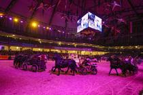 Bild: Frankfurt Festhallen Reitturnier - Donnerstag Abendveranstaltung