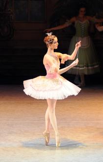 Bild: Tschaikowsky Ballett-Festival: Dornr�schen mit Erz�hlerin