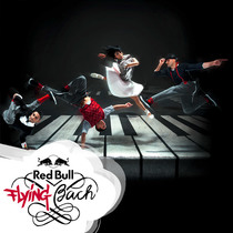 Bild: Red Bull Flying Bach