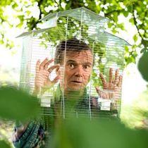 Bild: Volker Heymann - Der Hahn dreht auf - neue Dichtung aus der Vogelperspektive