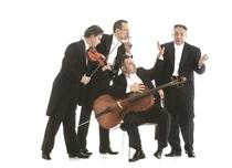 Bild: Mozart Group - Vier Saiten der Welt
