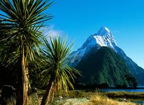 """Bild: Neuseeland """"von Aussteigern und Kiwis"""" - Dirk Bleyer"""