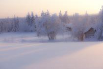 Bild: Multimediashow: Winter am Polarkreis - Entlang der Grenze zum ewigen Eis