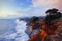 Bild: Neuseeland � Paradies am Ende der Welt?