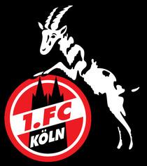 Bild: SV R�dinghausen - 1. FC K�ln U23