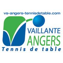 Bild: TTF Liebherr Ochsenhausen - Vaillante Sports Angers TT