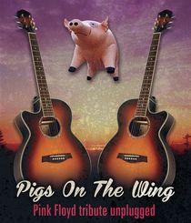 Bild: Pink Floyd tribute unplugged - Pink Floyd tribute unplugged