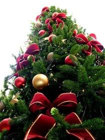 Bild: Adventsnachmittag - Weihnachten im Kloster