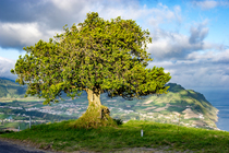 Bild: Azoren � geheimnisvolle Inseln im Atlantik
