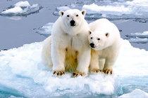 Bild: Inseln des Nordens - Abenteuer am Polarkreis - Live-Multivisionsshow mit O. Kr�ger & K. Langenberger