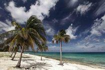 """Bild: """"Kuba"""" von Bruno Maul - pr�sentiert vom PLANETVIEW-Team mit Andreas Pr�ve"""