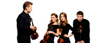 Bild: Altstadtkonzert Armida Quartett - Armida Quartett