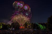 Bild: Feuerblumen und Klassik Open Air im Britzer Garten - Klassik - Made in Germany