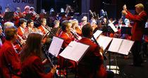 Bild: Konzert zum Neuen Jahr 2016 - Nahaufnahmen