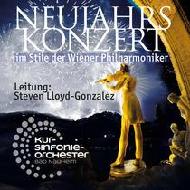 Bild: Neujahrskonzert im Stile der Wiener Philharmoniker