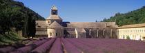"""Bild: Dia-Audio-Vision """"La Provence, Poesie der Sinne"""""""