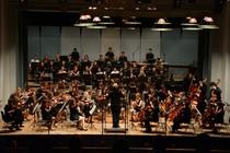Bild: Das Konzert