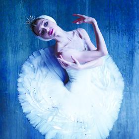 Bild: Klassisches Russisches Ballett aus Moskau - Schwanensee