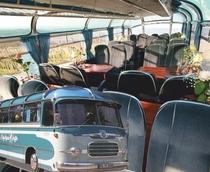 Bild: Rosa Ausblicke - mit dem Oldtimer-Panoramabus