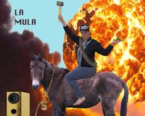 Bild: La Mula - A Beatmusical