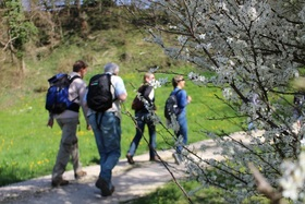Bild: Samstags Wanderungen - Gef�hrte Wanderung in der Umgebung