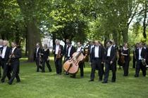 Bild: 4. Sinfoniekonzert - der Brandenburger Symphoniker