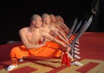 Bild: Die Meister des Shaolin Kung Fu - The Revenants Tour 2017