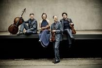 Bild: quartetaffairs - Grunelius-Konzerte - Konzert mit dem Signum Quartett