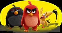 Bild: Angry Birds - Der Film - Kino in der Bibliothek