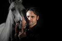 Bild: Pferdetraining live � mit Elmar Kretz - Sonderveranstaltung