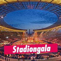 Bild: Stadiongala - Internationales Deutsches Turnfest 2017