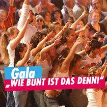 """Bild: Gala """"WIE BUNT IST DAS DENN!"""" - Internationales Deutsches Turnfest 2017"""