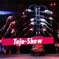 """Bild: Tuju-Show I """"Mal eben meine Welt retten"""" - Internationales Deutsches Turnfest 2017"""