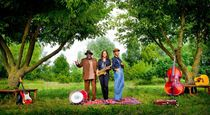 Bild: Blues Caravan 2017 - Vanessa Collier, Big Daddy Wilson und Si Cranstoun