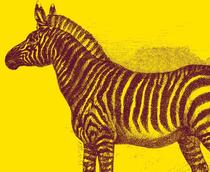 Bild: Die Analphabetin, die rechnen konnte - Schauspiel nach dem Bestseller von Jonas Jonasson Welturaufführung