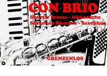 Bild: Duo Con Brio - Von der Klassik zum Jazz und vom Tango zum Blues