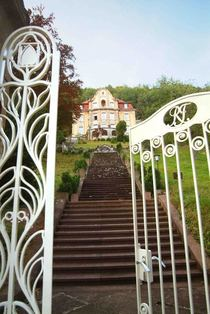 Bild: F�hrung in der Villa Franck - Tag der offenen T�r im Jugendstildenkmal
