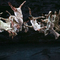 Bild: Cloud Gate Dance Theatre of Taiwan - White Water / Dust